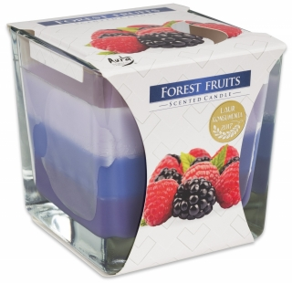 Bispol svíčka Coloured Forest Fruits 170g