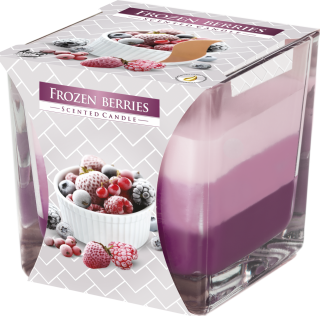 Bispol svíčka Coloured Frozen Berries 170g